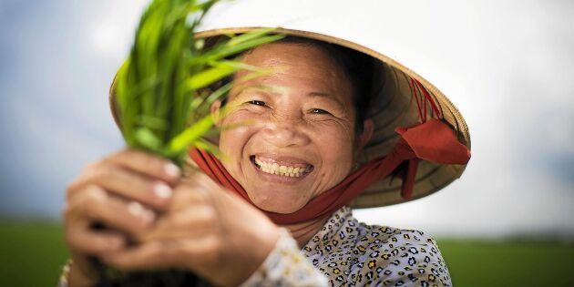 Ge bort jämställdhet i julklapp – och hjälp Vietnams kvinnor
