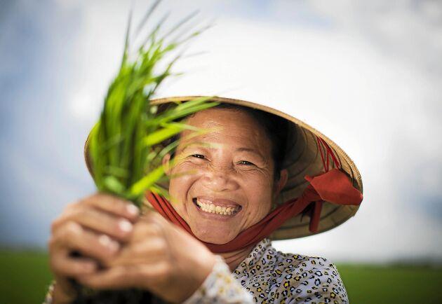 Din gåva kan göra skillnad! Risbonden Do Thi Ha i Vietnam har fått hjälp av organisationen We effect.