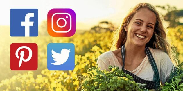 Följ Land i sociala medier