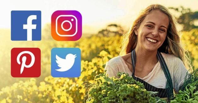Land finns på Facebook, Instagram, Twitter och Pinterest.