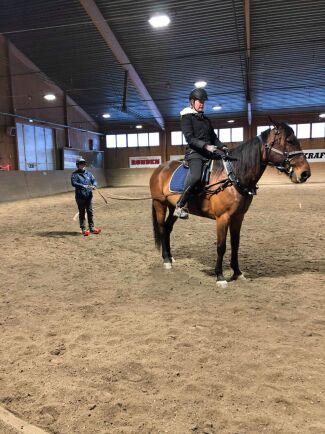 Hästarna fick dra åkare på miniskidor i ridhuset för att testa och träna.