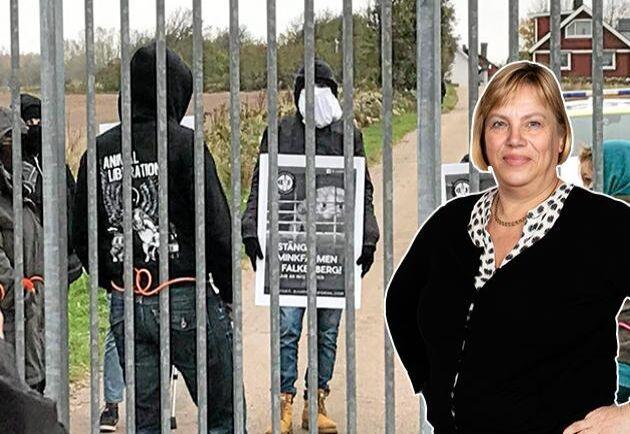 Domstolarna måste överge sin naiva syn på djurrättsaktivisternas brott, skriver Lena Johansson.
