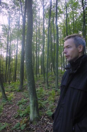 Jesper Runge, skogsförvaltare på Björnstorp-Svenstorps godsförvaltning, visar ett bestånd med sykomorlönn på Näsbyholms gods