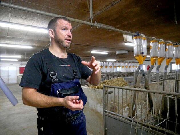 Go gris är ett grisföretag som innefattar sju gårdar. Jonas Würtz driver företaget tillsammans med Mads och Martin Mogensen.