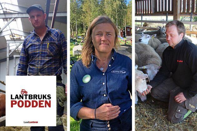 Christer Johansson, Karin Lindahl och Robert Pettersson berättar om hur de tog sig tillbaka till var de är i dag, efter att alla ha drabbats av något omskakande.
