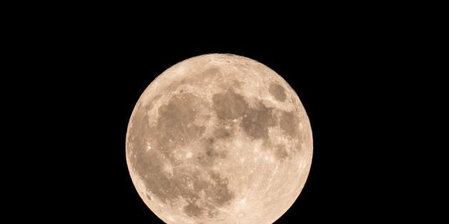 Spektakulära månupplevelser bjuds under våren