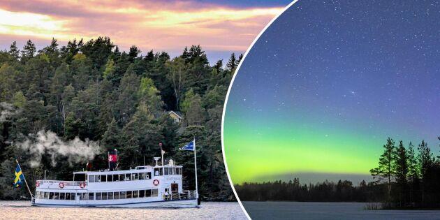Utländska turisters vanligaste googlingar om Sverige