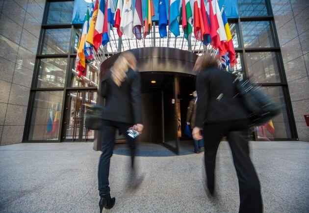 Tyskland hoppas kunna starta Cap-förhandlingarna i oktober.