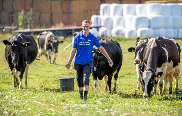 Eko vänder minus till plus. Dagens låga mjölkpris gör den konventionella produktionen olönsam på gården, enligt Lars Andersson. Genom att ställa om till ekologisk produktion ger med nuvarande kalkyler ett plus även med en investering i ny mjölkrobot.