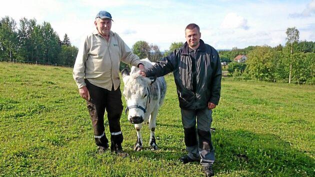 Roland och Christer Åkesson är lättade efter att ha fått upprättelse i tingsrätten efter att deras får felaktigt tvångsavlivats. En ko är nu det enda djur de har kvar på gården.