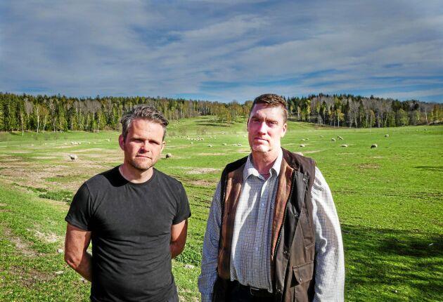 """""""Det är vår dröm det här. Det är så fantastiskt här när vi är på vår arbetsplats, djuren och jag. Men det är som en skräckfilm i stället"""", säger Johan Lundgren."""