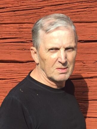 Åke Karlsson, Riksdagskandidat Landsbygdspartiet oberoende (LPo)