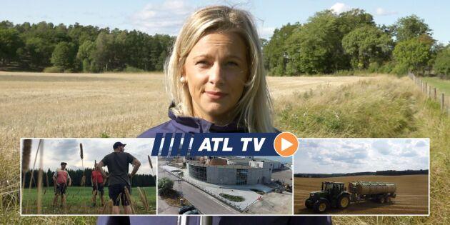ATL TV: Köpte balsamlare utomlands