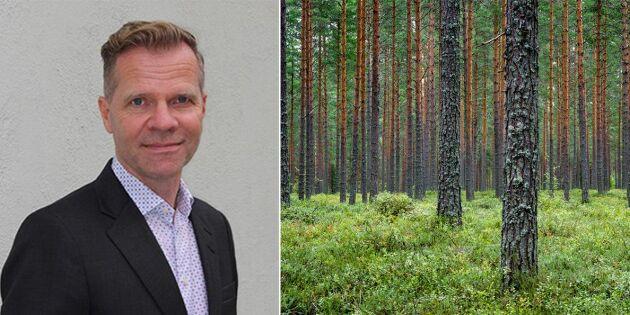 Ny styrelseordförande i Skogsstyrelsen