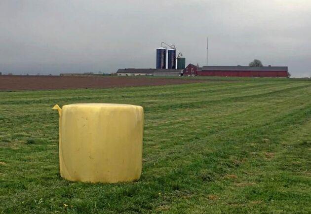 22 rundbalar hösilage fick de ut på 4 hektar.