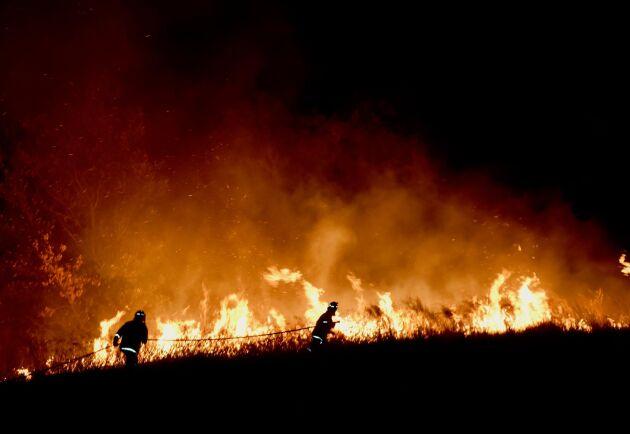Bränder bekämpas fortfarande på många håll, och i Delstaten Tasmanien är brandrisken extrem på flera ställen. Bara i South Australia har omkring 4500 hektar mark redan brunnit.