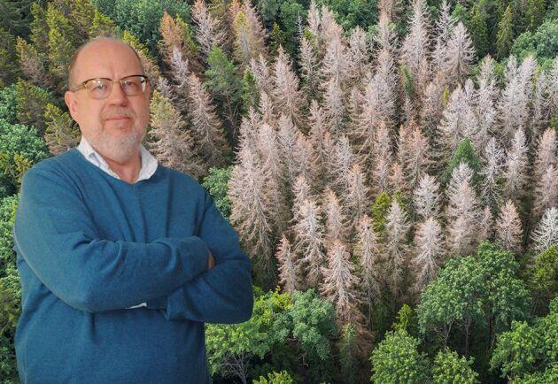 Skogsägarna för en ojämn kamp med granbarkborrarna. Till stor del är de i händerna på vädret, skriver Knut Persson.