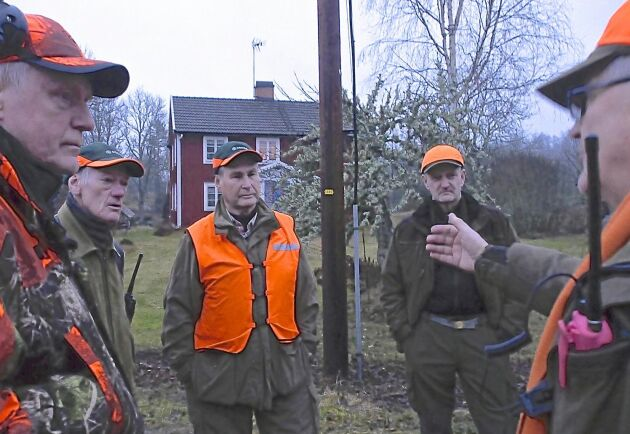 Många rutinerade jägare samlades för storjakt på vildsvin i Högsby kommun i lördags.