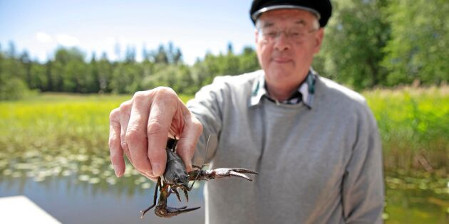 Kräftor är Stävresjöns svarta guld