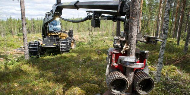 Avverkningsstopp ekonomisk katastrof för Sverige