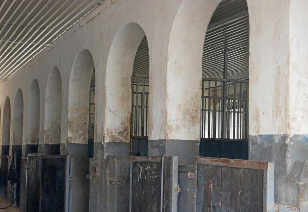 Ett av avelsstallen är ett renoverat 1700-talsstall, med vackra valv. Träningsstallet ligger i egendomens gamla kostall.