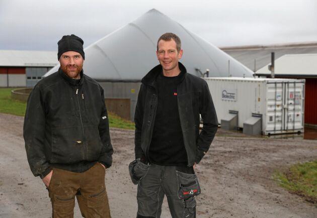 """Fredrik Klang och Henrik Stenström på Berte gård har satsat på en biogasanläggning på mjölkgården. """"Sett till kapitalbindningen genererar biogasanläggningen mer än korna"""", säger Henrik Stenström."""