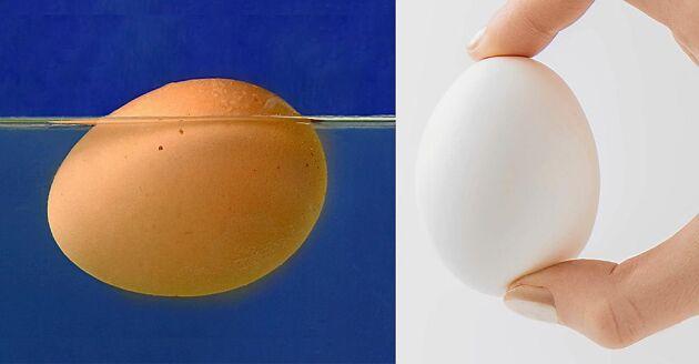 Det går att ta reda på om ägget är färskt eller gammalt utan att knäcka det. Testa så här!
