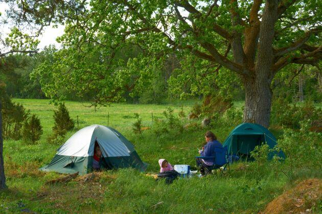 Ett eller ett par dygn, minst 60-70 meter från bostadshus eller fritidshus, anses rimligt för den som vill tälta.