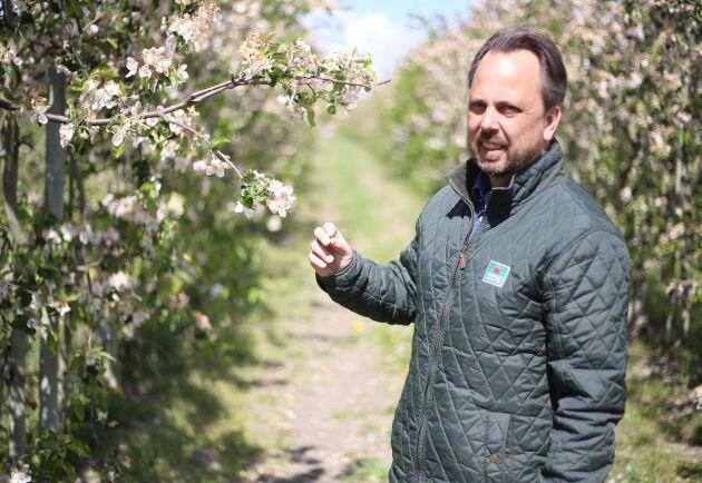 Jan Flemming Jensen, odlingschef på Kiviks musteri.