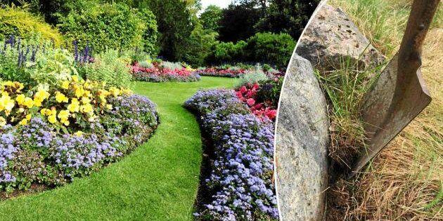 Smartaste trädgårdsjobbet: Några hugg med spaden och sommaren är räddad!