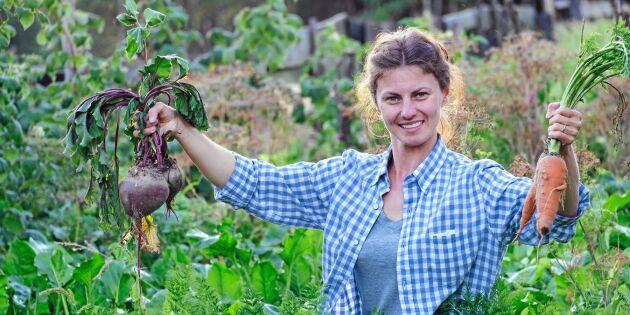 Självförsörjande på grönt – så mycket behöver en familj odla