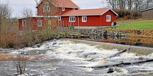 4 000 kraftverk och dammar ska miljöprövas