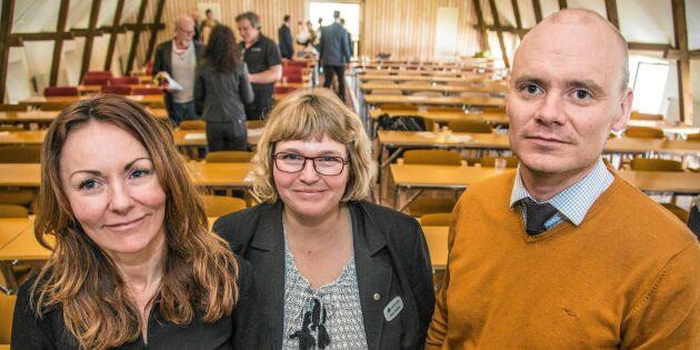 Gotlands stämma lugn tillställning