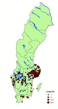 Kartan visar antalet anmälda TBE-fall i Sverige 2017. Området kring Mälardalen är extra drabbad.
