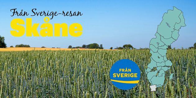 Från Sverige-resan: Skåne - här är smakerna i centrum
