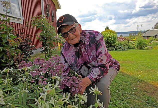 Märta Eklund visar trädgårdens enda skuggrabatt med en underbar rosa stjärnflocka.