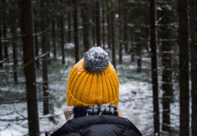 Om skogsbolagen ska locka till sig kvinnor måste de vara medvetet aktiva, framgår av en ny rapport.