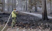 Sveaskog hävdar force majeure efter bränder