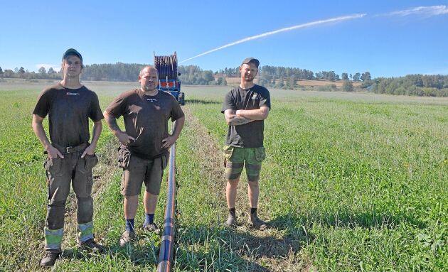 Markus, Joakim och André Lindh i Högsby utanför Kalmar har investerat miljoner i ny bevattningsutrustning. Joakim Lindh menar att bevattningen räddade företaget från att behöva slakta ut djur.