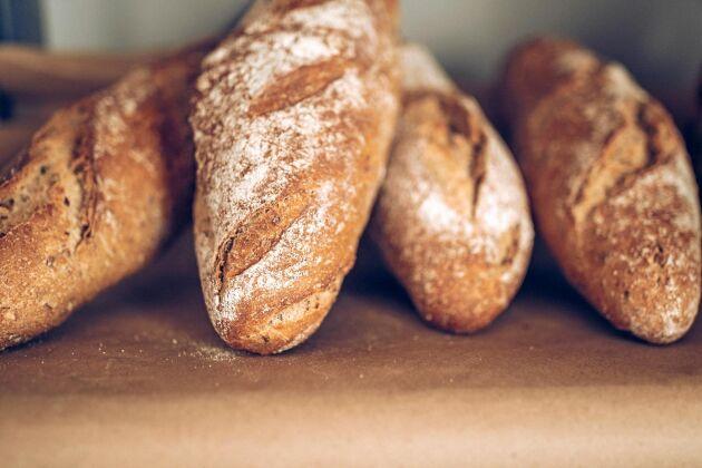 Brödpriserna gick upp efter förra årets sommartorka. I år kommer priserna troligen att sjunka.