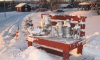 Arla stoppades av snön - mjölken bortskänkes