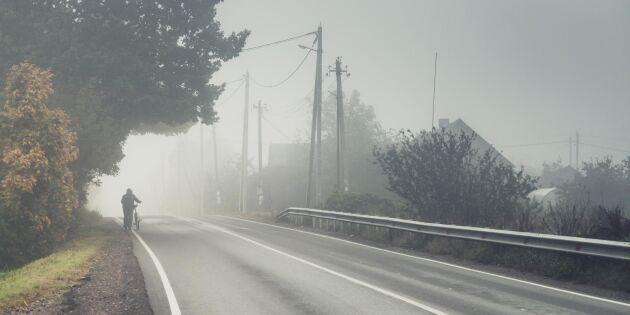 Den här sidan av vägen ska du gå på – enligt regelverket
