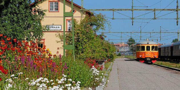 Järnvägsparkerna som kan ha lämnat spår i din trädgård