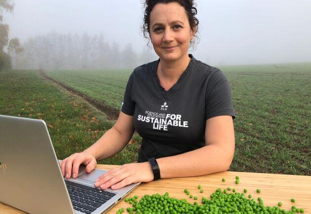 Cecilia Hammenhag, forskare och projektkoordinator för SLU:s växtförädlingsprojekt.