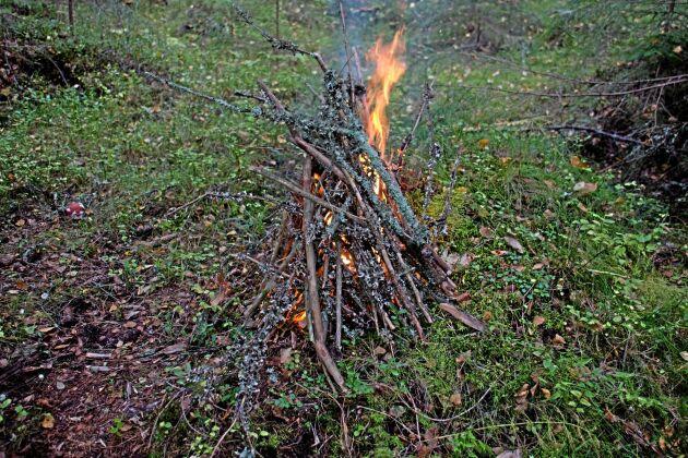 Obligatoriskt vid harjakt är en sprakande eld för att hålla värmen.