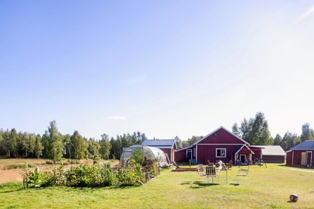 Översikt över familjegården: Köksträdgården, växthuset, bastun, ett förråd med massor med saker, en lekstuga, och till höger ett litet hus där hönsen håller till.
