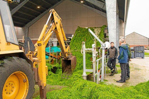Århus universitet bedriver i samarbete med en mängd företag och organisationer sedan maj 2018 försök att raffinera proteinfoder ur gräs.