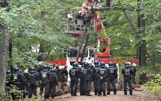 Tusentals poliser var på plats för att avhysa demonstranterna i träden.