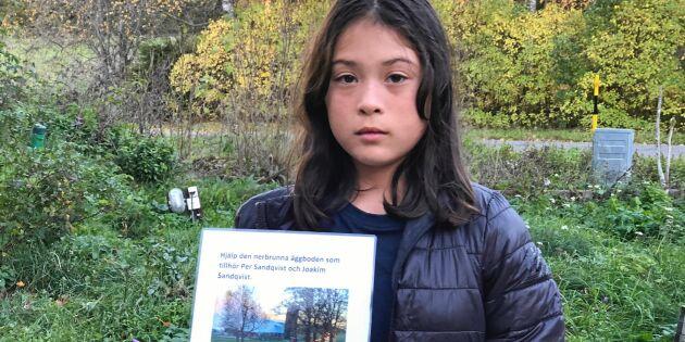 14 000 höns brann inne –11-åriga Majas idé kan rädda verksamheten