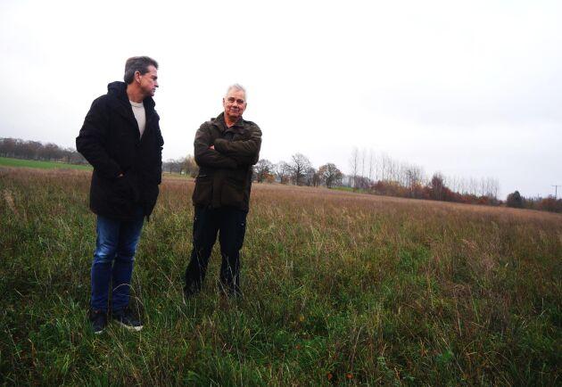 """Än så länge är lakrits planterat på två av de totalt åtta hektaren. """"Det ska bli kul att se om det kan bli bonde av honom"""", säger Stellan Börjesson om Martin Jörgensens satsning."""